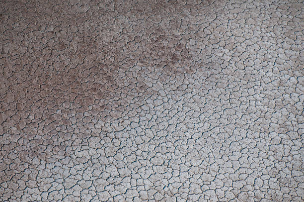 aridness / cracked soil dry earth texture lake bed stock pictures, royalty-free photos & images