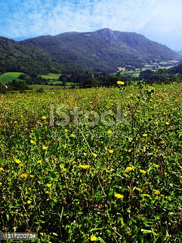 istock Ariege. Mountain and rural scenery, Pyrenees France. 1317220734