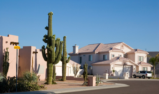 Phoenix Arizona Cul-de-sac with Saguaro Cacti in Front Adobe House