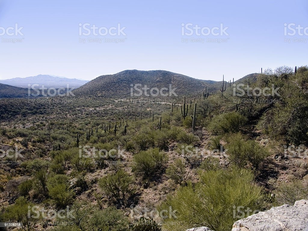 Arizona Desert 1 royalty-free stock photo