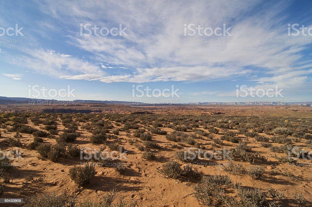 Arizona Desert Lizenzfreies stock-foto
