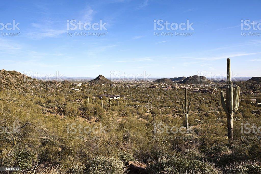 Arizona Desert with homes. stock photo