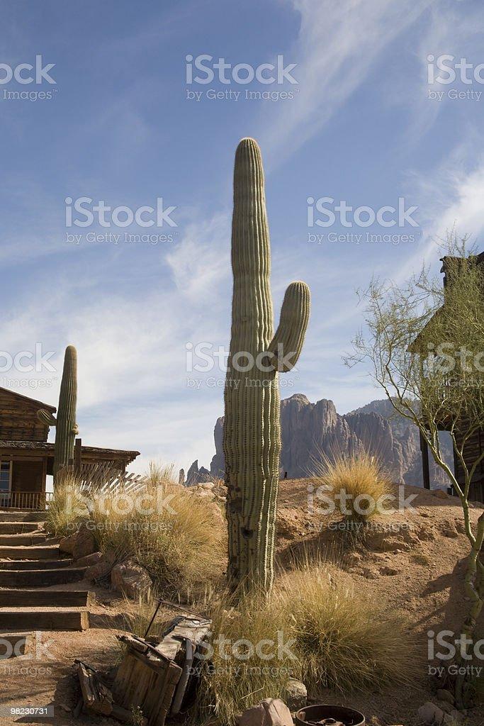 Arizona Ghost town royalty-free stock photo