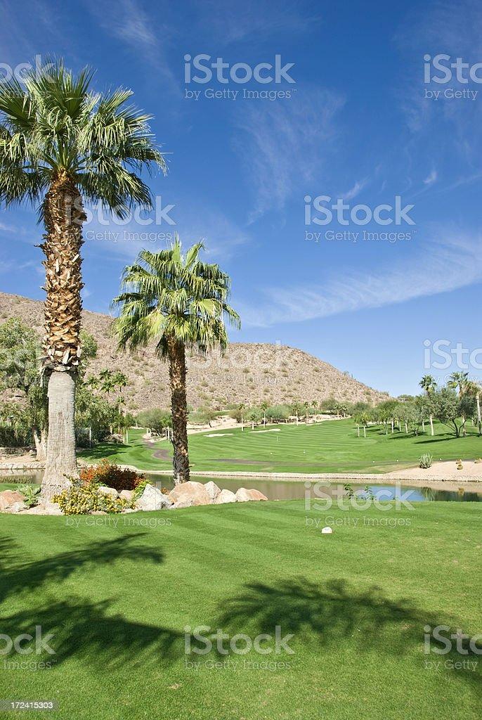 Arizona Golf Landscape royalty-free stock photo