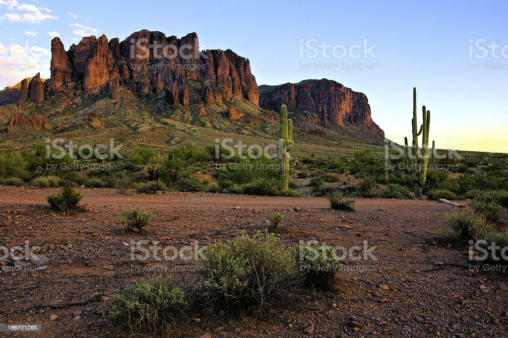 Arizona mountains and cacti at dusk, USA stock photo