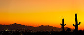 A sunset in Arizona with cactus