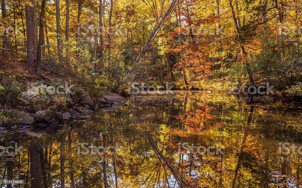 Arkansas fall landscape, Petit Jean state park stock photo