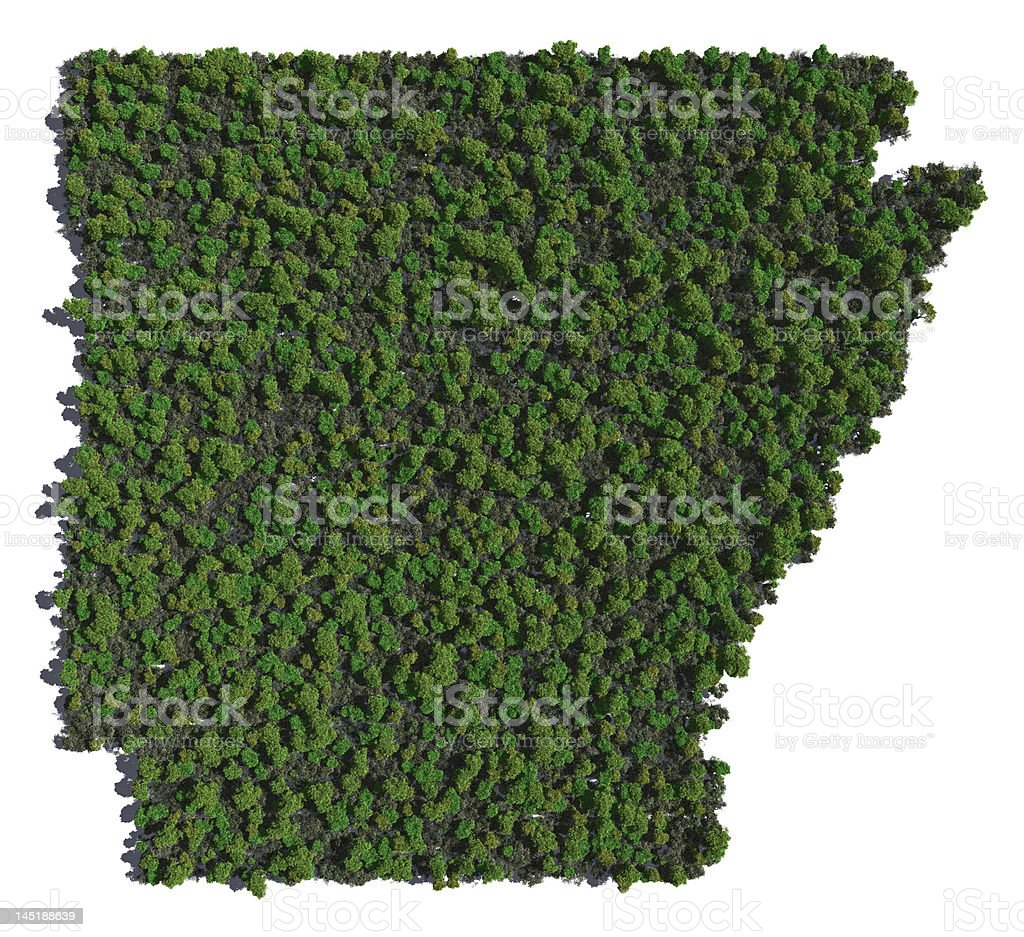 Arkansas in Trees stock photo