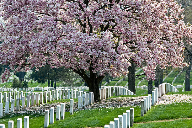 Arlington National Cemetary – Foto