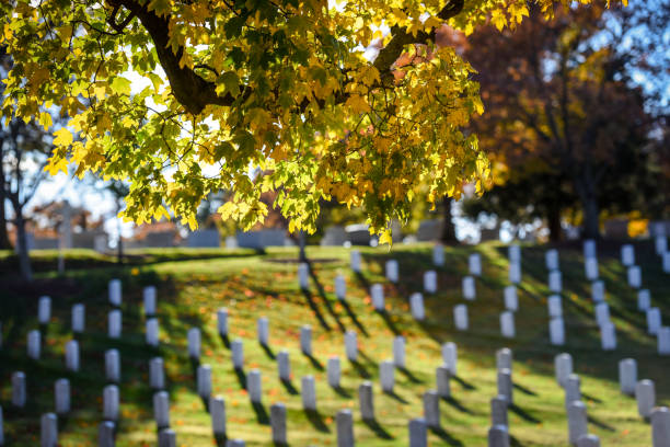 arlington national cemetery in autumn - memorial day weekend stock pictures, royalty-free photos & images