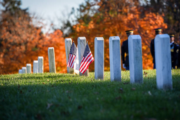 arlington national cemetery. veterans day - arlington national cemetery stock pictures, royalty-free photos & images