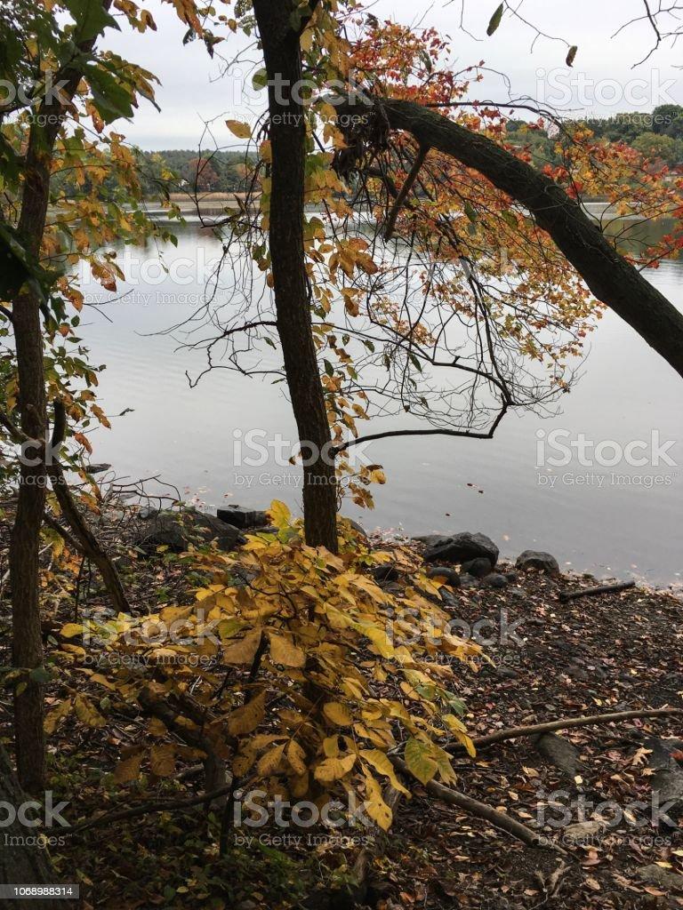 IMG_5744 Arlington Reservoir stock photo