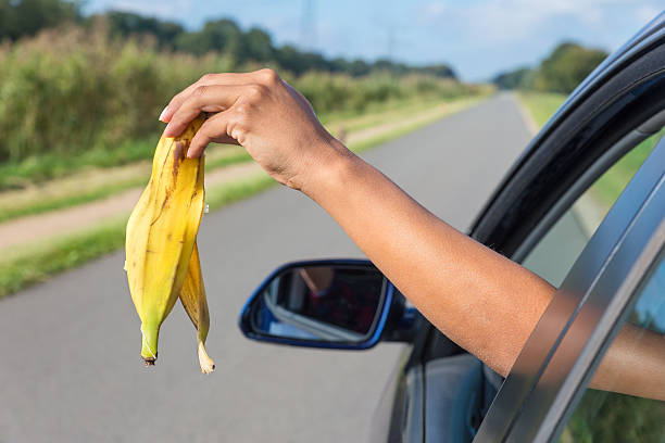 Arm dropping peel of banana out car window Female arm throwing  fruit waste out of car window. The woman in the car is demonstrating what some people do for real: throw waste in nature. This is forbidden, it's bad for our environment and the police can give you a fine or penalty for this behavior. banana peel stock pictures, royalty-free photos & images