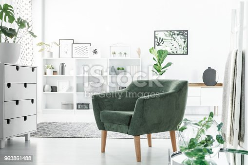 Green armchair in a white room interior with a commode, decorations on shelves and plants