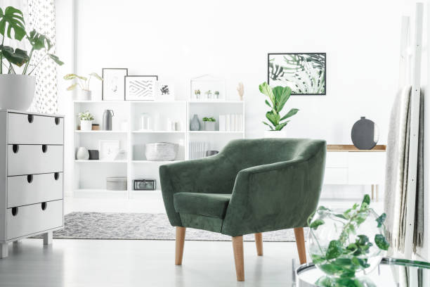 Armchair in white room Green armchair in a white room interior with a commode, decorations on shelves and plants neat stock pictures, royalty-free photos & images