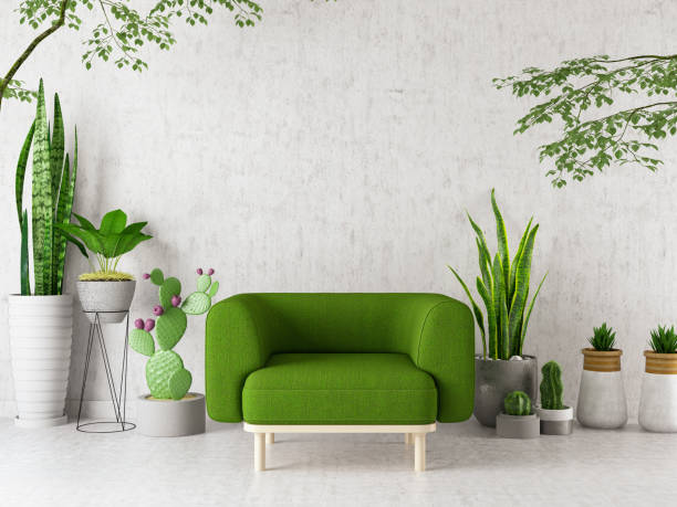 Armchair with Green Plants Flowers and Cactuses stock photo