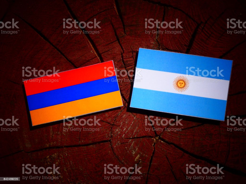 Armenian flag with Argentinian flag on a tree stump isolated stock photo