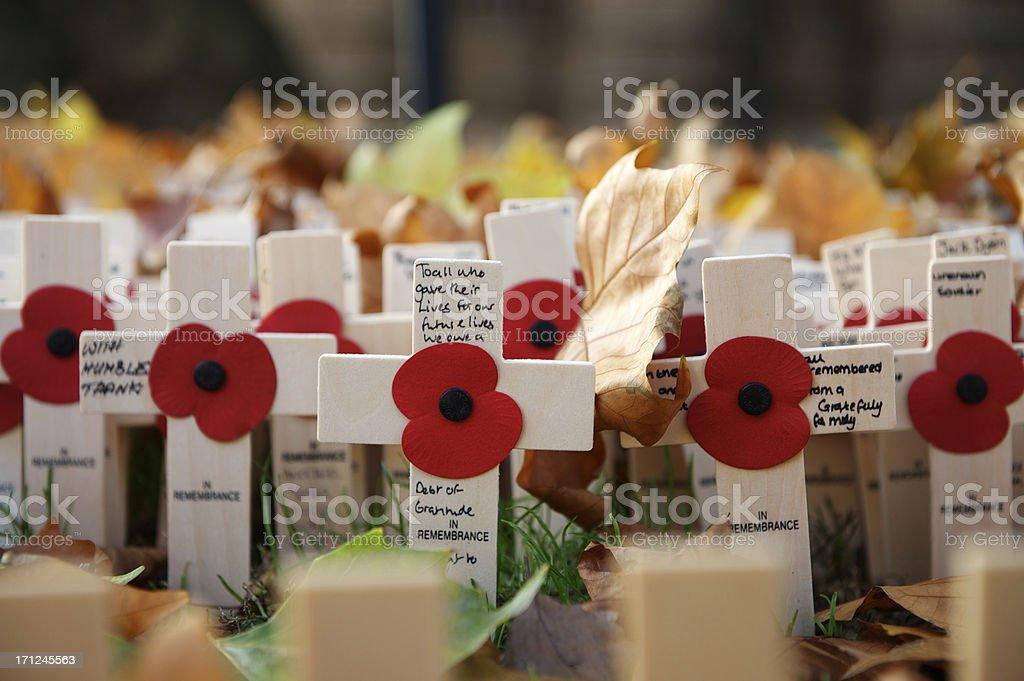 Armistice Day stock photo