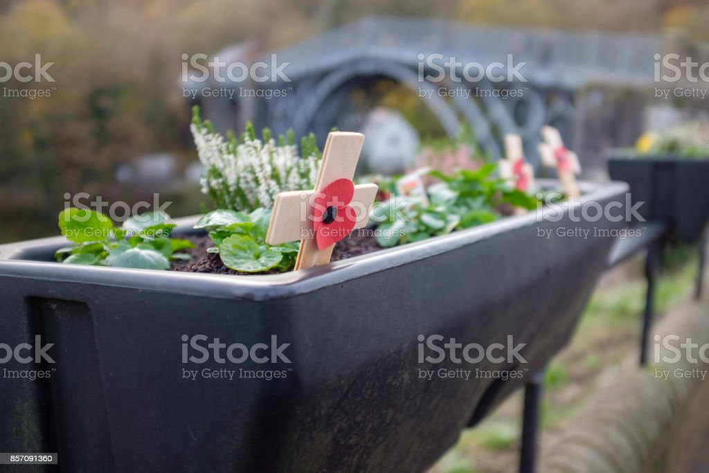 Armistice Day Tribute - Never Forget stock photo