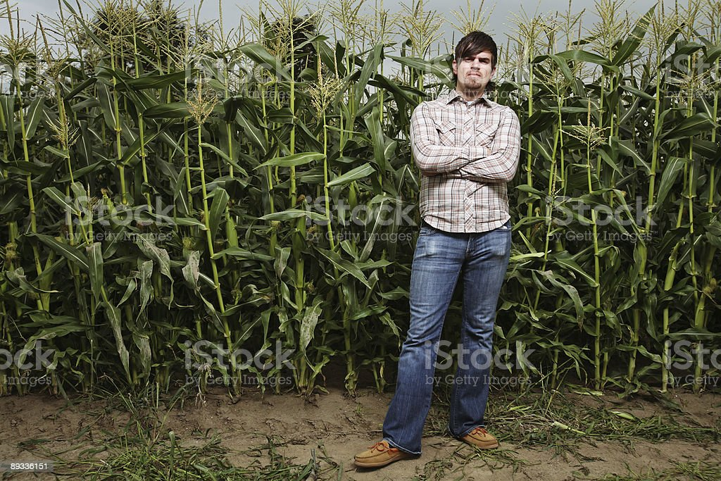 Arms Cross Man in Corn Field royalty-free stock photo