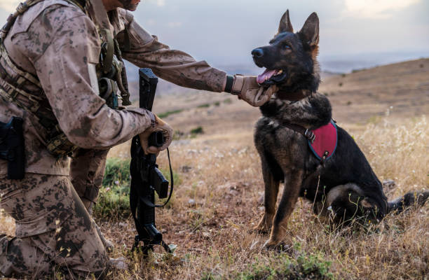 Army soldier loving his trained dog