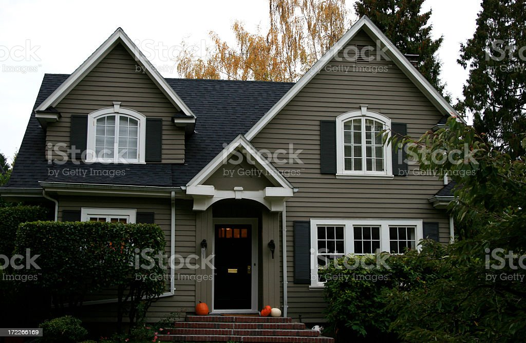 Army-green house with a black rooftop and bushes at front stock photo