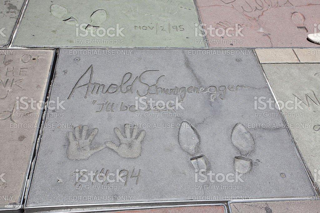 Arnold Schwarzenegger - foto de acervo