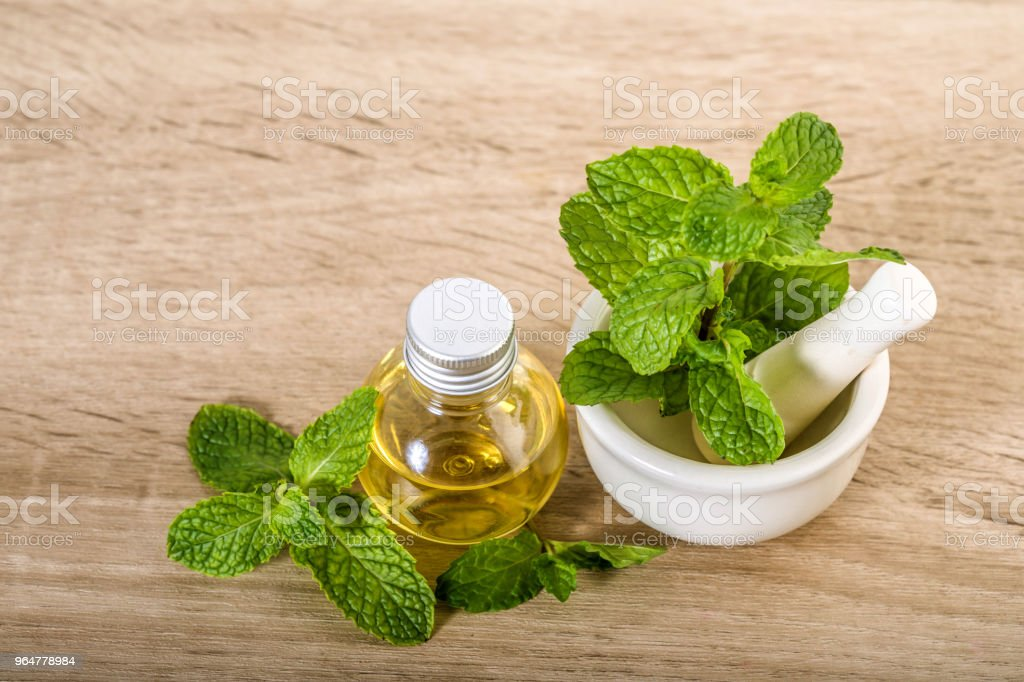 Aroma essential oil from a peppermint in the bottle on the table with fresh green mint leaf royalty-free stock photo