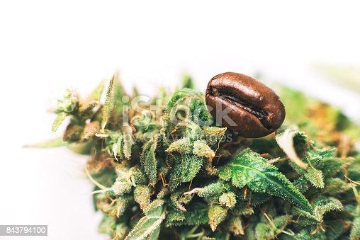 istock aroma of coffee and cannabis bud 843794100