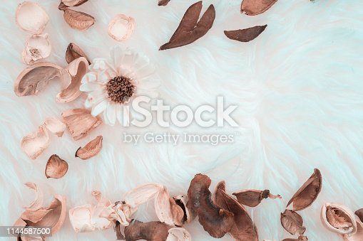 istock aroma therapy and spa object in spring season with dry tropical leaf decorate on white wool or fur background 1144587500