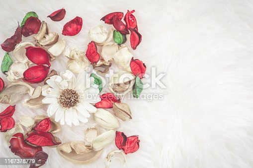 istock aroma therapy and spa object in spring season with red and green dry tropical leaf decorate on white wool or fur background 1167378779