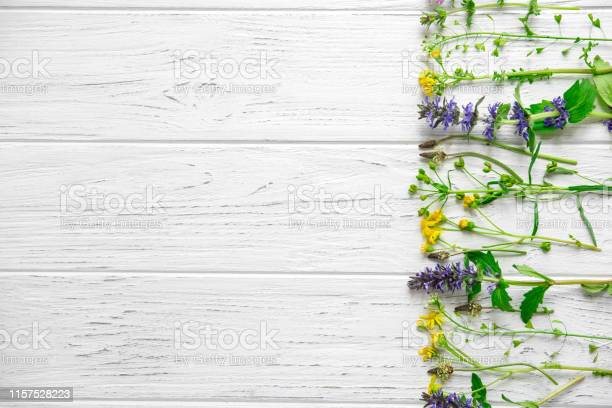 Aromatherapy and summer wildflowers fresh aromas of flowers frame for picture id1157528223?b=1&k=6&m=1157528223&s=612x612&h=kcrog9yspbmbn9ajjq5t0cnobkxs9kl8kbly9t  rqy=