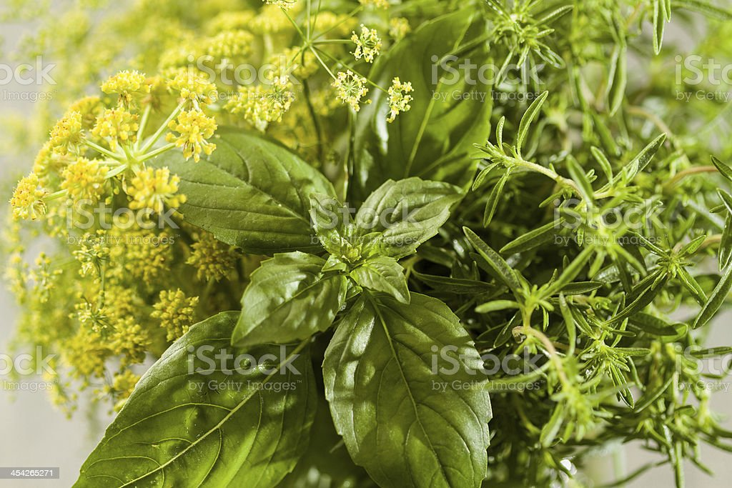 Aromatic herbs royalty-free stock photo