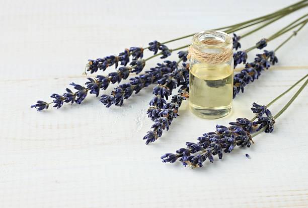 aromatico l'olio essenziale di lavanda in una bottiglia. - oli, aromi e spezie foto e immagini stock