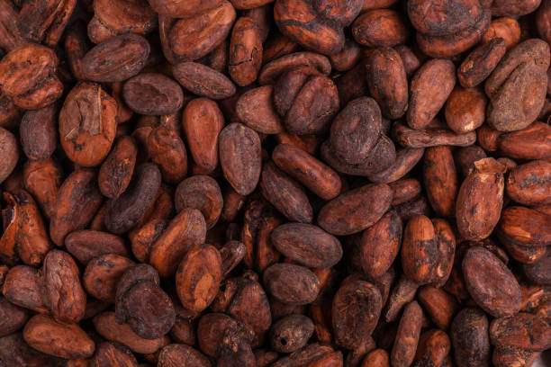 Aromatic raw cocoa beans background. Top view. Close up Aromatic raw cocoa beans background. Top view. Close up cocoa bean stock pictures, royalty-free photos & images
