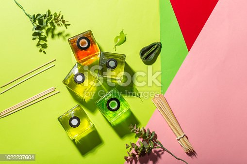 istock Aromatic sticks for home 1022237604