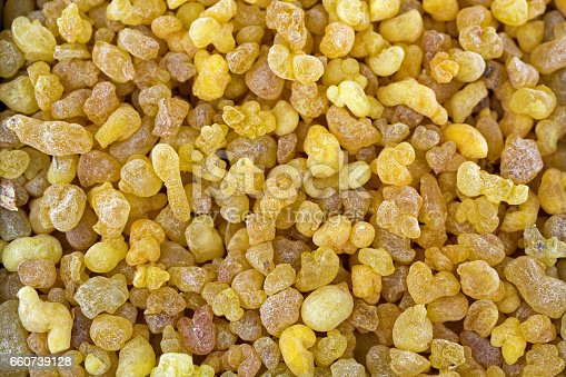 istock Aromatic yellow resin gum from Sudanese Frankincense tree, incense made of Boswellia sacra tree, Etiopia 660739128