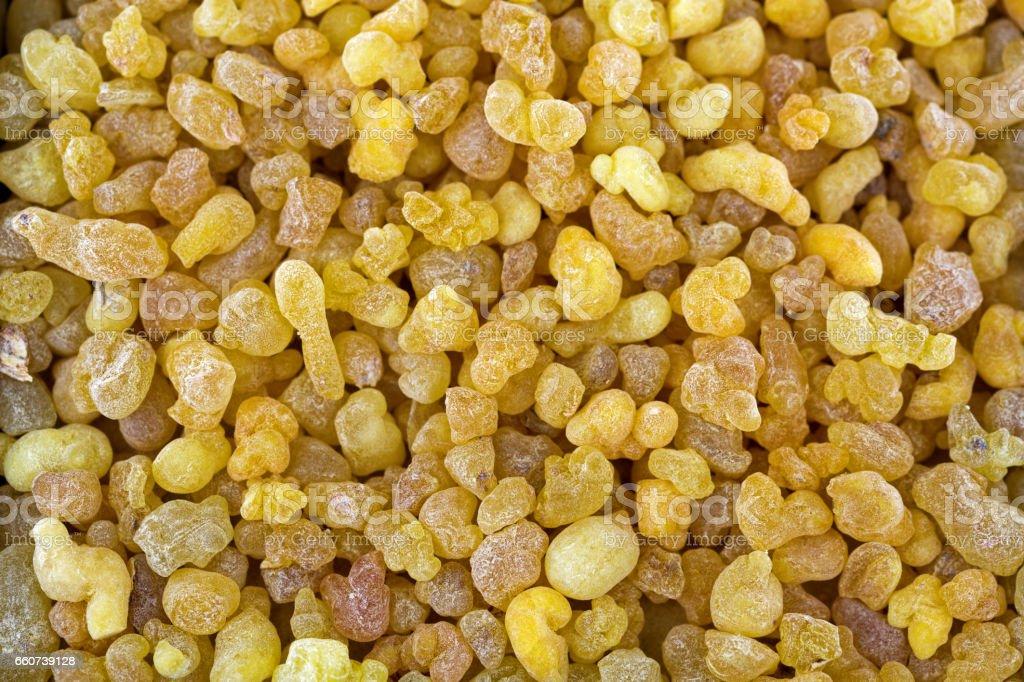 Aromatic yellow resin gum from Sudanese Frankincense tree, incense made of Boswellia sacra tree, Etiopia stock photo