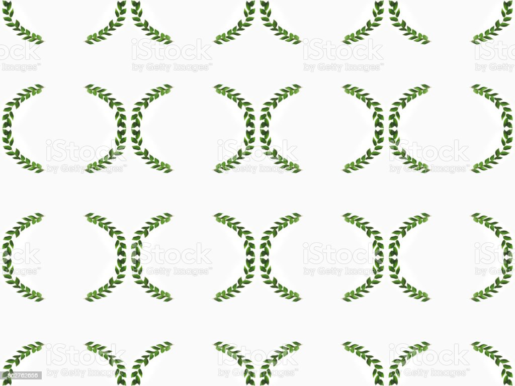 arranged green branches with leaves stock photo