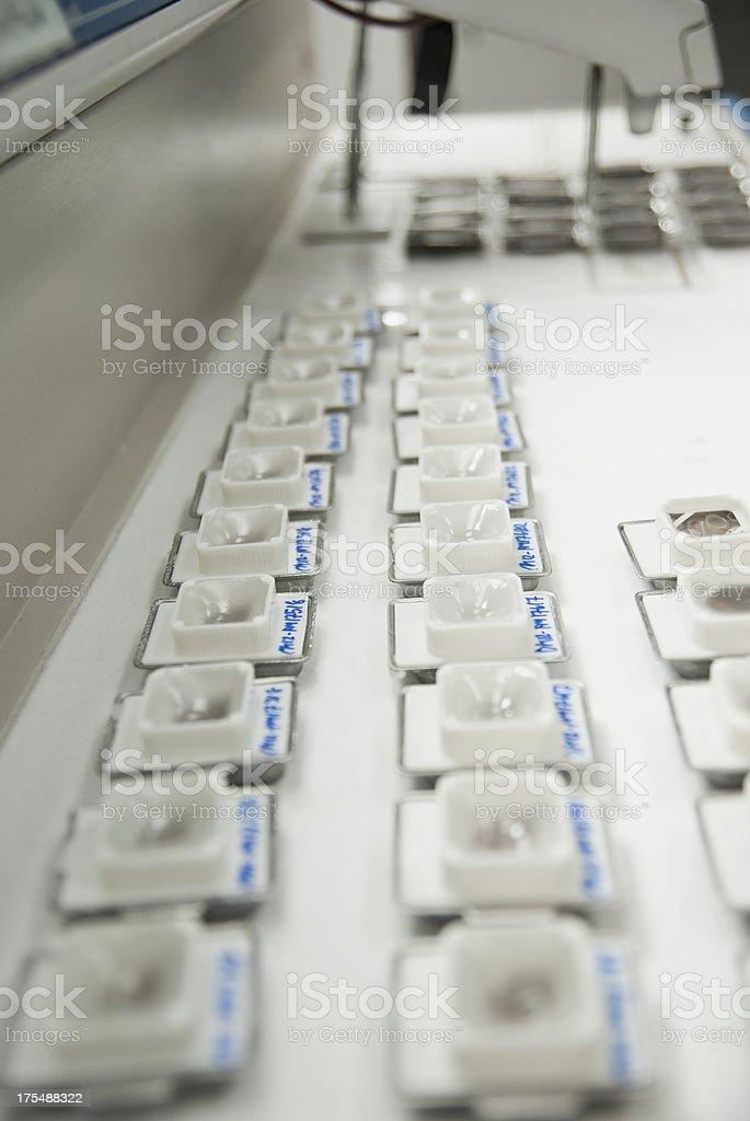 arranged histopathology paraffin block stock photo