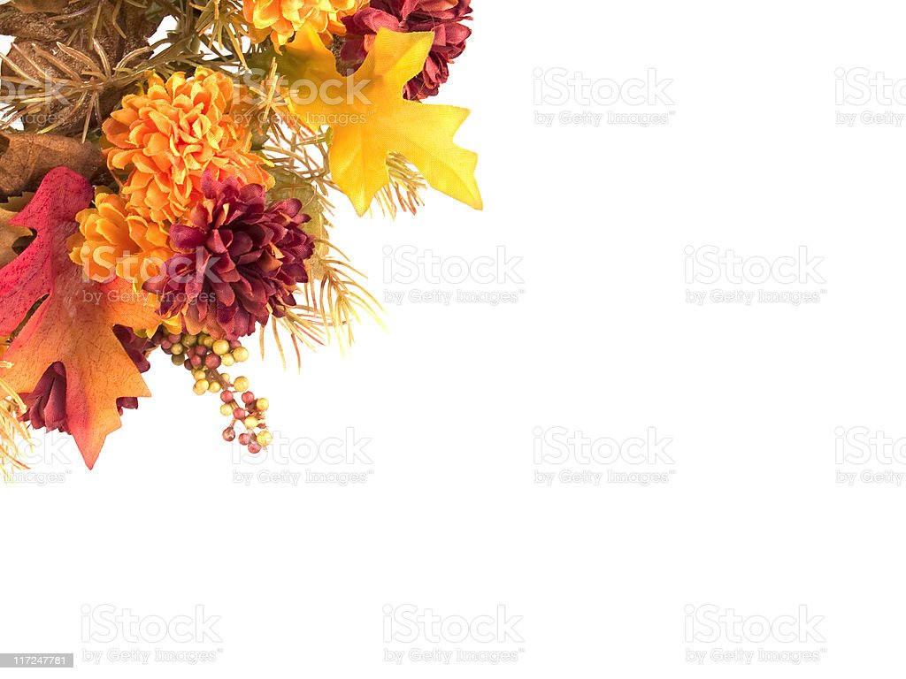 Arrangement of autumn flowers and leaves displayed on white royalty-free stock photo