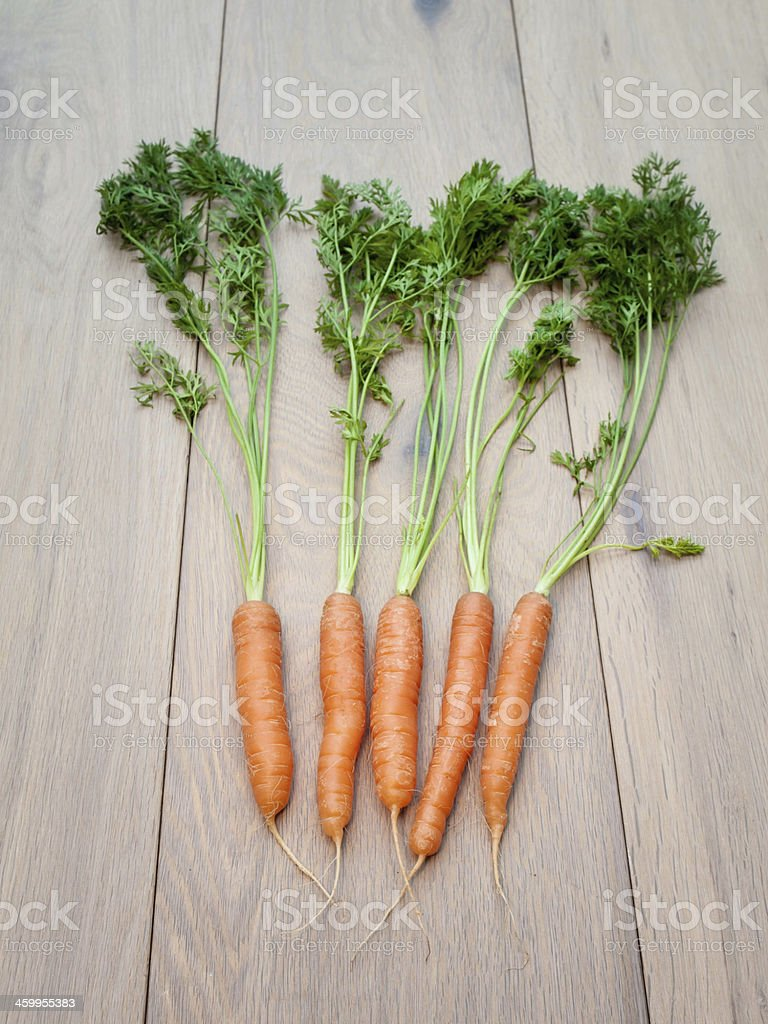 Arrangement of Freshly Harvested Carrots stock photo