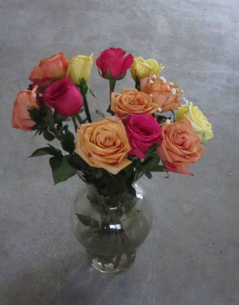 Arrangement of multi-colored roses in vase stock photo
