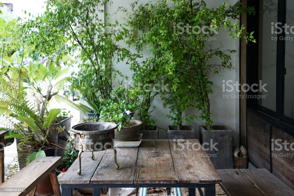 Arrangement Of Outdoor Terrace Patio And Smoking Area Decorated With Wooden Furniture And Green Plant Pots At Coffee Cafe And Restaurant Stock Photo Download Image Now Istock