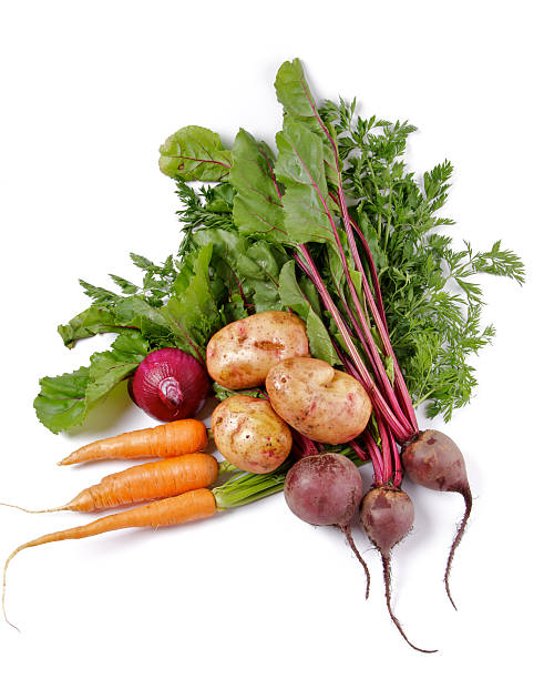 Arrangement of Raw Organic Vegetables Arrangement of Raw Organic Farmer's Potato, Carrot, Red Onion and Beet isolated on white background root vegetable stock pictures, royalty-free photos & images
