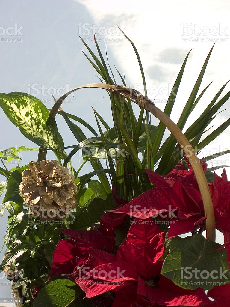arrangement royalty-free stock photo