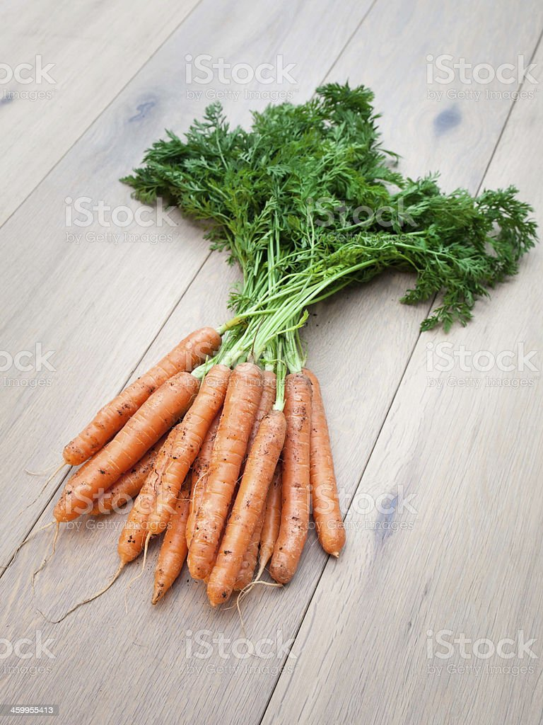 Arrangment of Fresh Young  Carrots stock photo