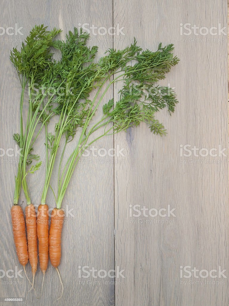 Arrangment of Freshly Harvested Carrots stock photo