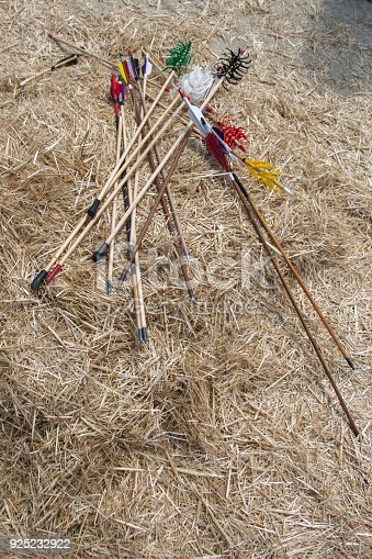 istock Arrow rprojectile weapon system archery 925232922