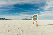 Arrows are in the center of the target, hitting their mark in the bulls-eye. Precision is paramount in target shooting. This image symbolizes preparation, determination and accuracy it takes to reach a goal. Image taken on the salt flats of Utah, USA.